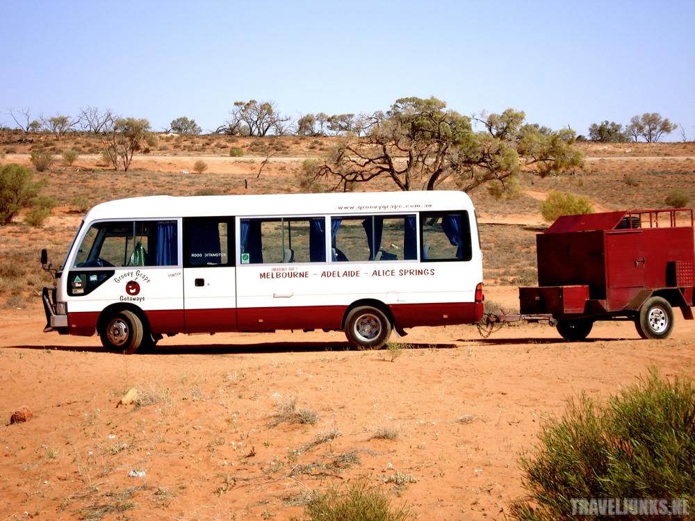 Groovy Grape Bus