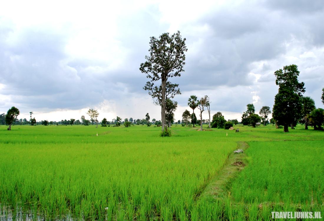 Cambodja Chhuk 03