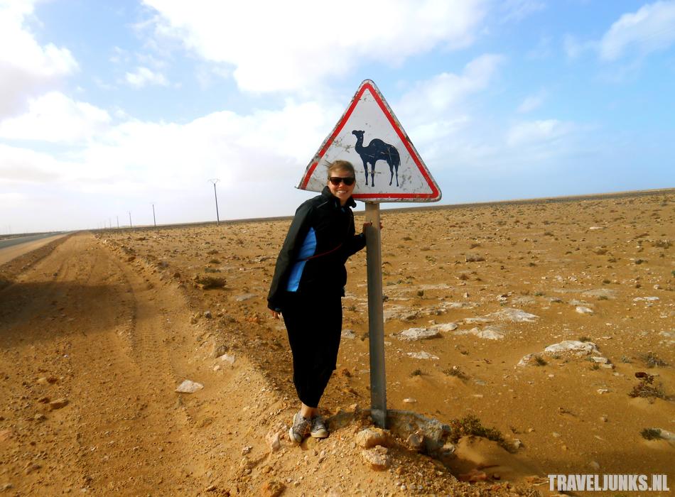 Overland westelijke Sahara 02