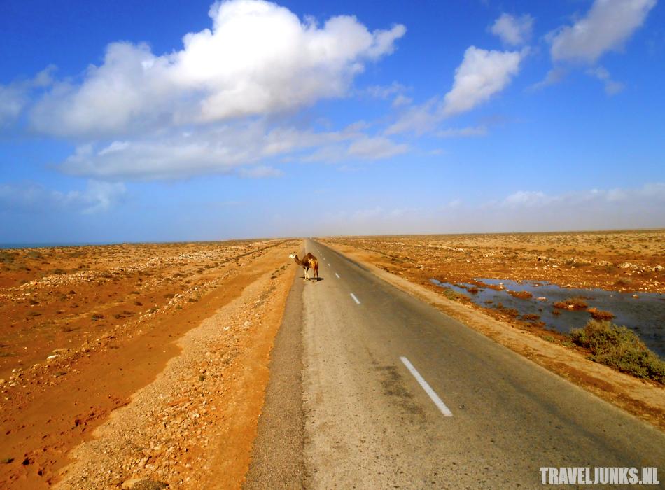 Overland westelijke Sahara 03
