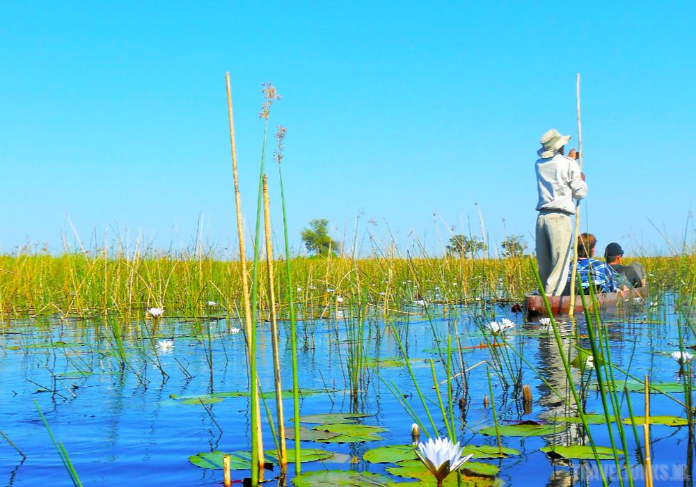 Okavango boot