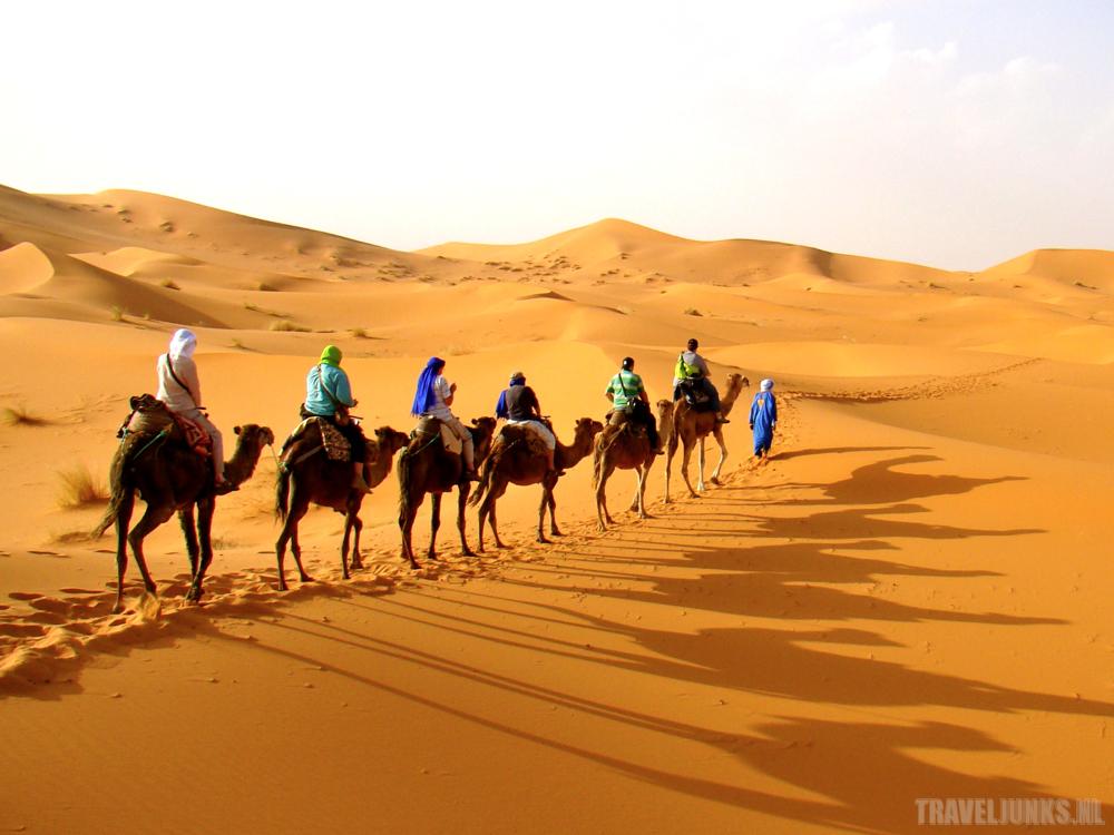 Travelsmart sahara