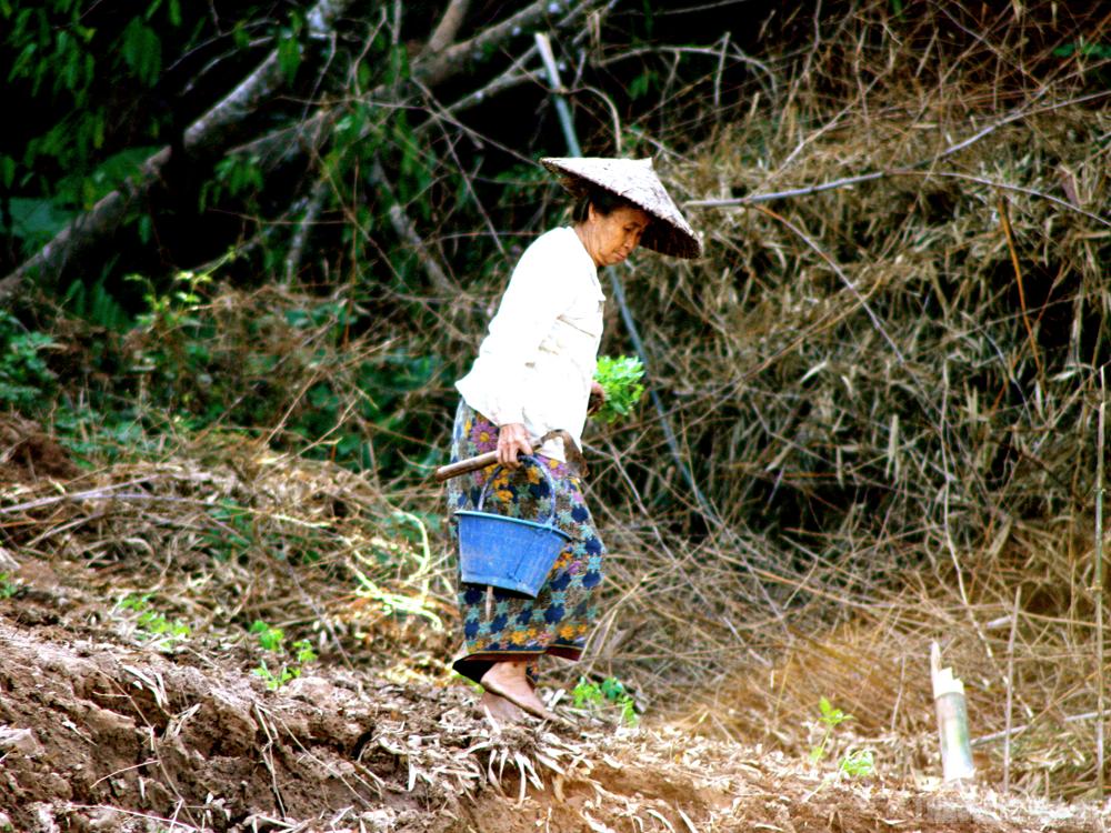 mekong river side
