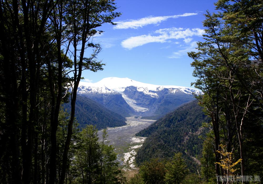 Pumalin gletscher