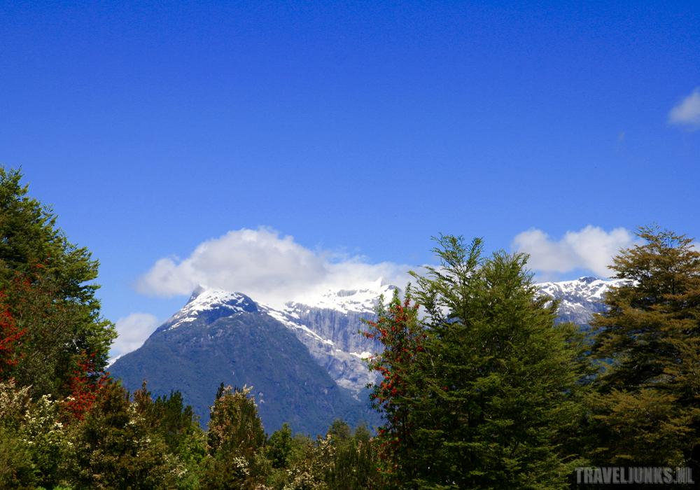 Pumalin snowtop