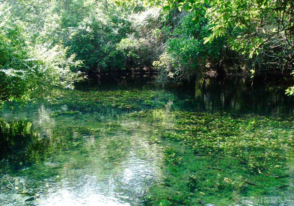 Bonito rivier