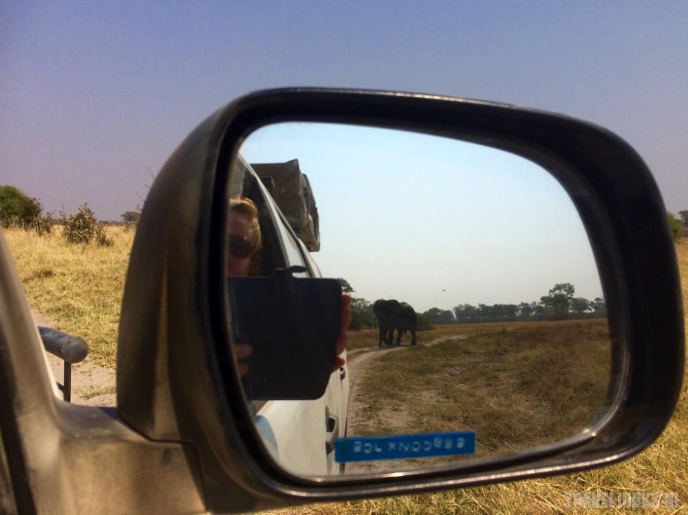 Botswana roadtrip