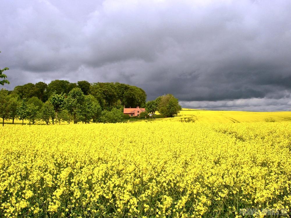 Zuid-Zweden