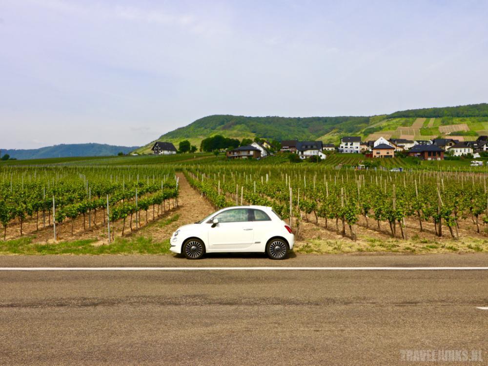 wijngebied