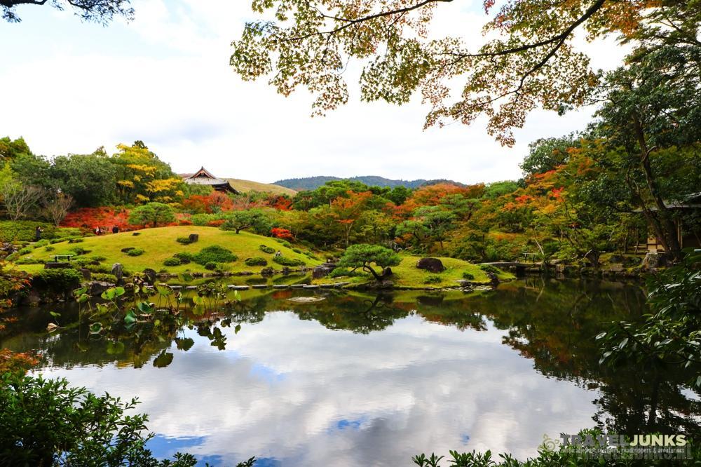 Nara Zentuin